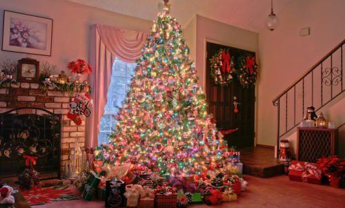 árboles navideños como idea de negocio para ganar dinero